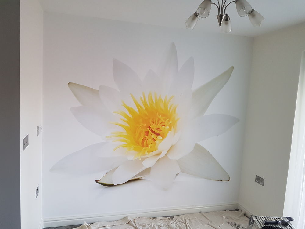 Pinchbeck Decorators Gallery 11